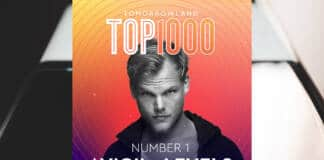 Levels Avicii N° 1 Top Tomorrowland 1000